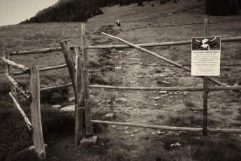 Grenze 06
