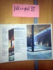 Cluster Wellness