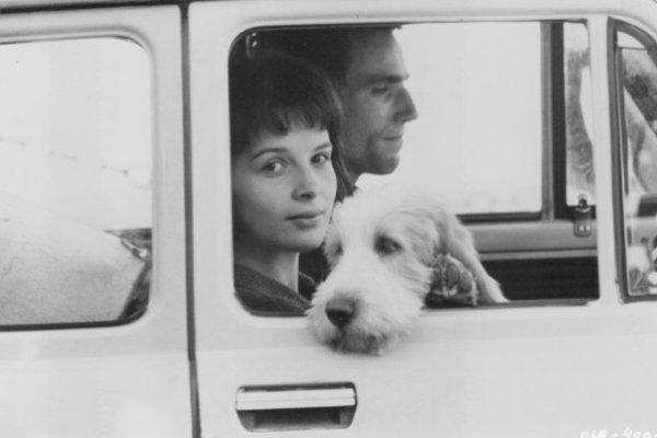 MicheLiber | L'insostenibile leggerezza dell'essere, di Milan Kundera