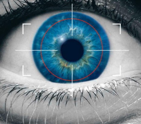 Probably the most foolproof biometric measure is the eye's iris. Its complex pattern of zigzagging lines and random dots is much more distinctive than the whorls of a fingerprint. In fact, because authorities in a few foreign countries are confident that iris scans can't be circumvented, they're starting to allow airlines to use iris scanning at selected airports. For the airlines, it's a perquisite for frequent fliers: If people register their iris scans, they can bypass the usual security check. Currently, a person's eye must be in close to the scanner. Intelligence and law-enforcement agencies hope that some way can be found to scan irises from a distance -- or even to spot a suspect in a crowd.
