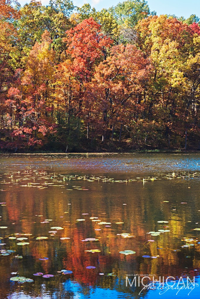 A view of Wildwood Lake in Holly State Recreation Area