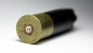 empty-shotgun-bullet-shell-972434-m