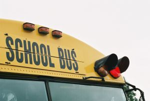 school-bus-red-light-655548-m
