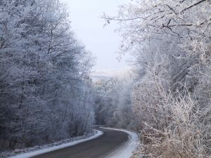 winter-road-1130317-m
