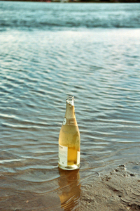 champagne-on-beach-1554236-200x300