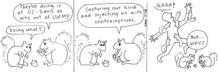 Squirrels1111