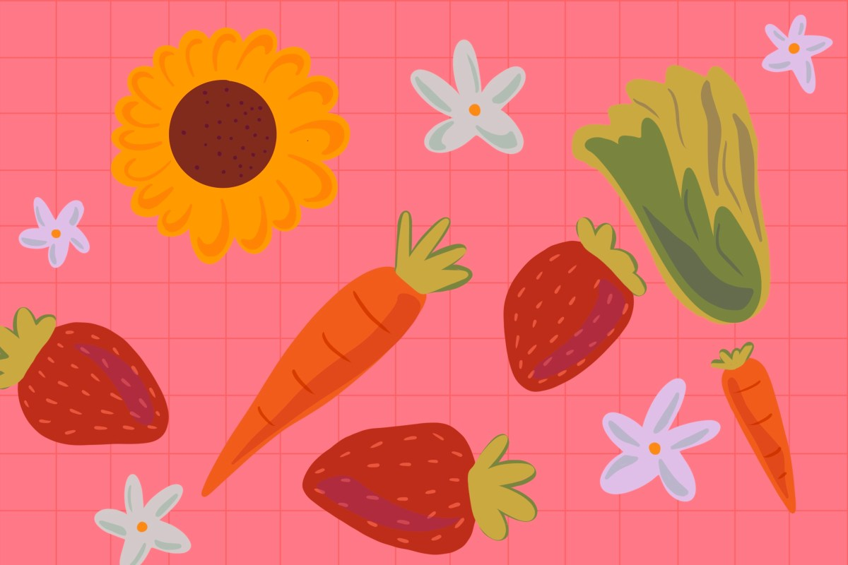 An assortment of sunflowers, strawberries, and carrots.