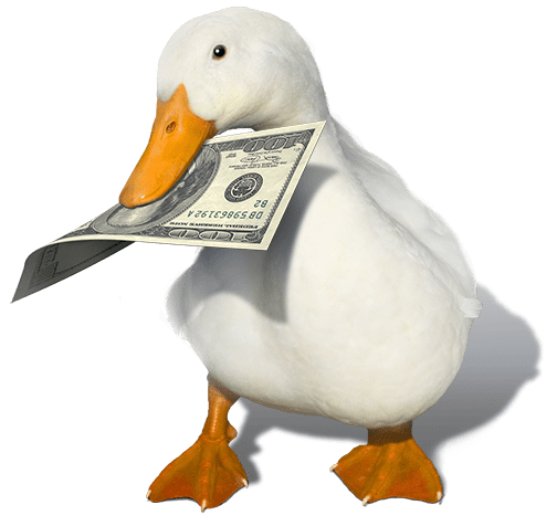 Samuel Puddlington The Duck with bill