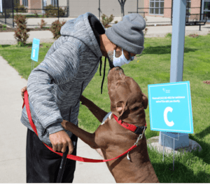 A dog helped during One Health in Detroit