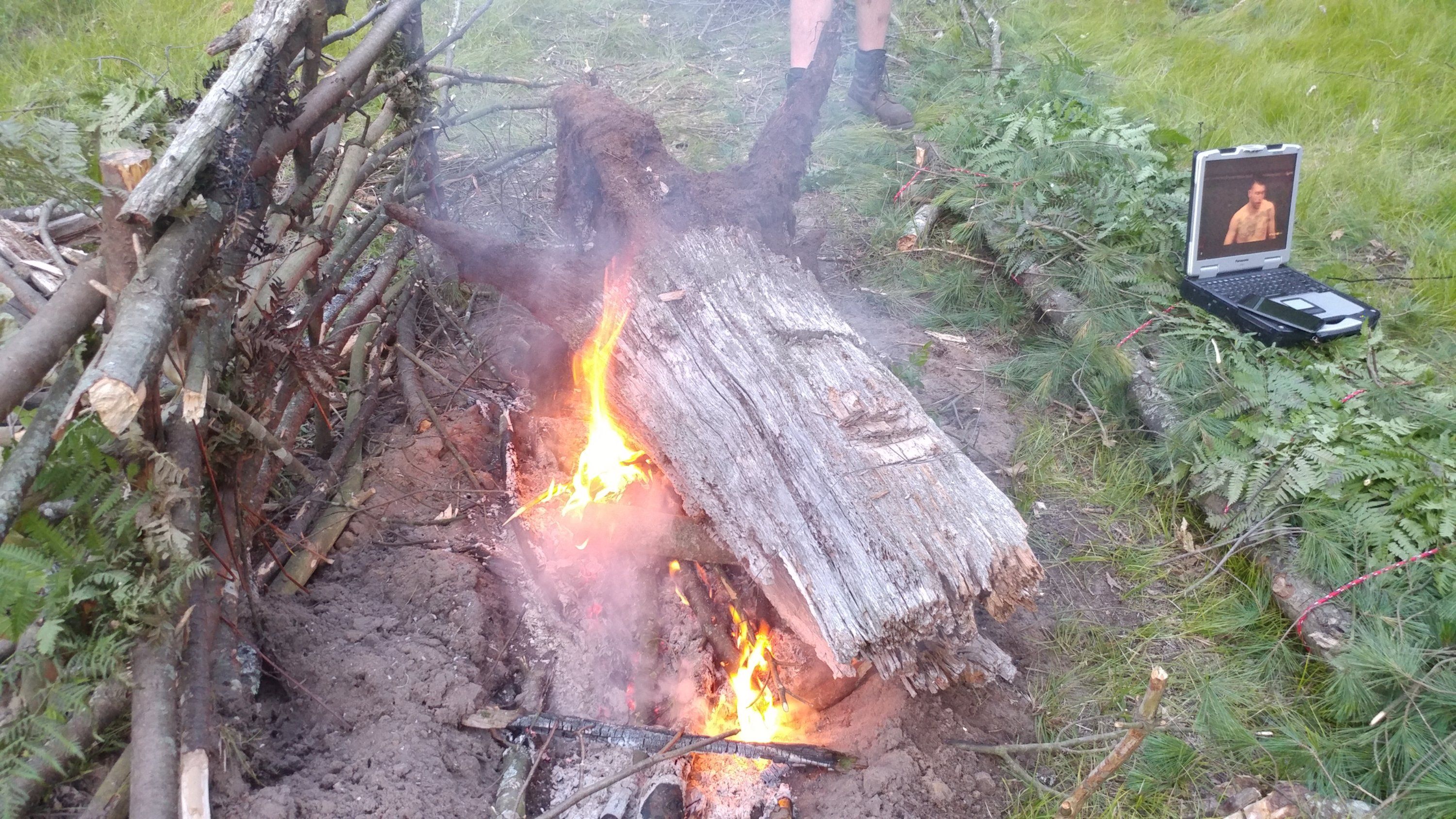 old stump fire
