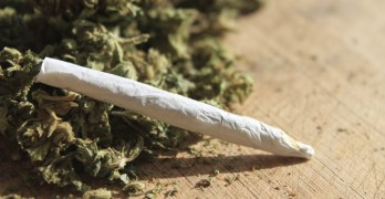 Critical Issue: The Review Debates Drug Legalization
