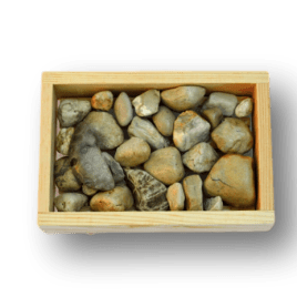 Michigan Beach Rock Soap Dish
