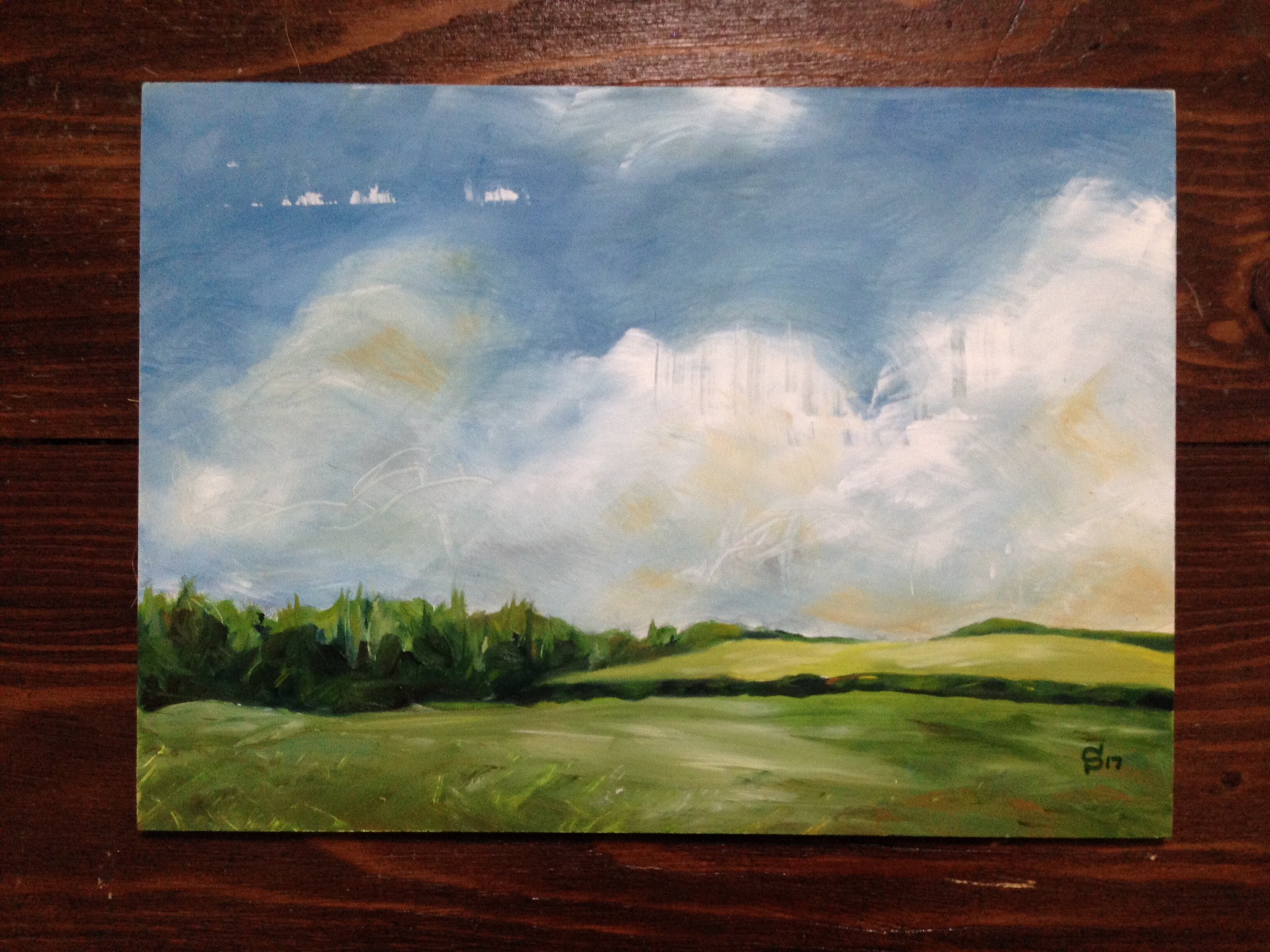 Landscape in oils by artist Michael Statham