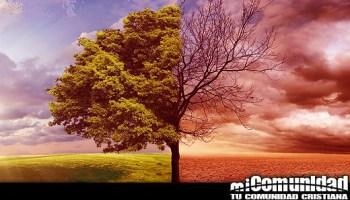 ¿Por qué Dios puso el árbol de la ciencia del bien y del mal en el jardín del Edén?
