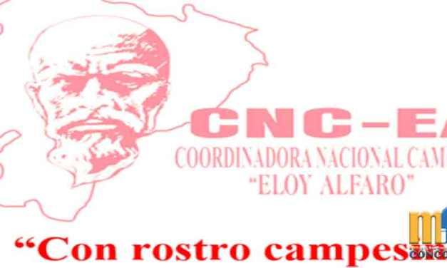 Coordinadora Campesina presenta propuesta para enfrentar crisis