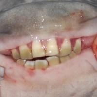 Top 10: Animales que tiene la bocas mas feas del mundo