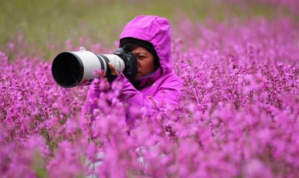 Nature-photographers5__880