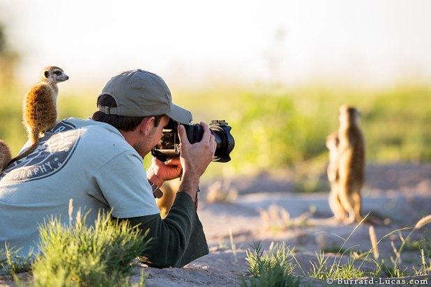 fotografos-naturaleza-19