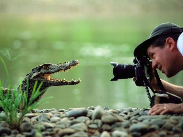 fotografos-naturaleza-26