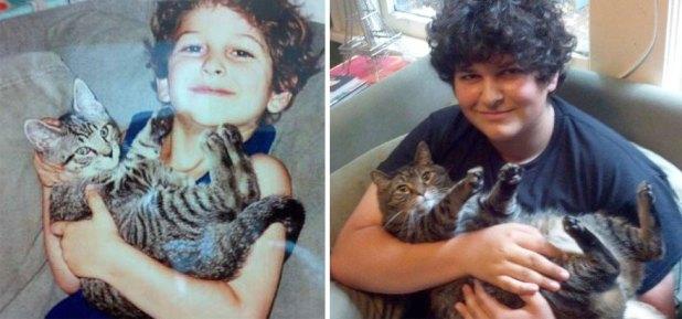 gatos-creciendo-antes-despues-3
