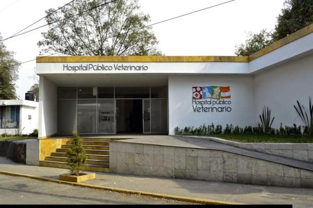 Hopital-Veterinario-Público-en-México-1