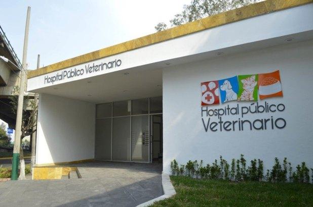 Hopital-Veterinario-Público-en-México-3