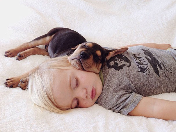 Theo-Beau-toddler-naps-with-puppy-theo-and-beau-13