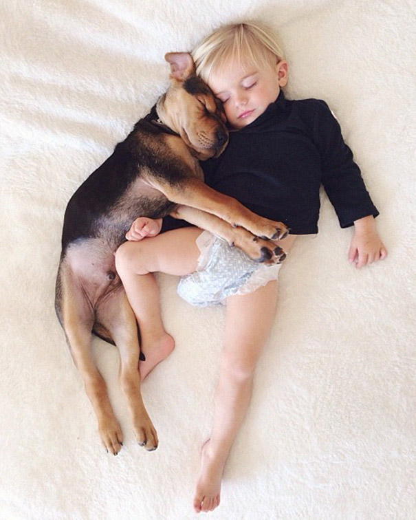 Theo-Beau-toddler-naps-with-puppy-theo-and-beau-2-7