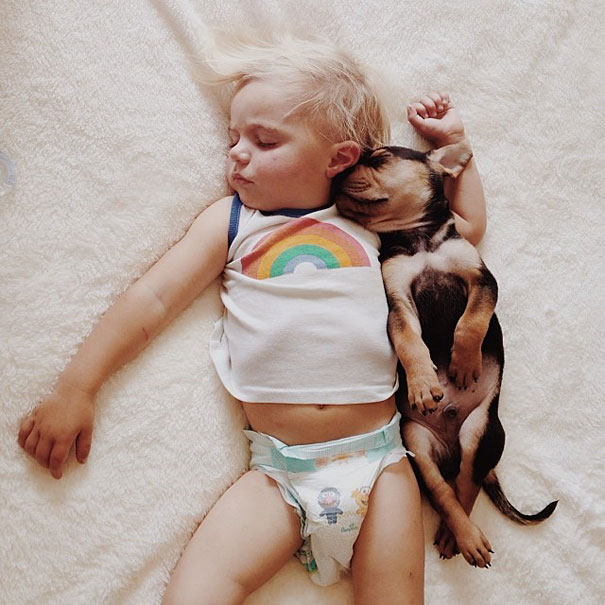 Theo-Beau-toddler-naps-with-puppy-theo-and-beau-7