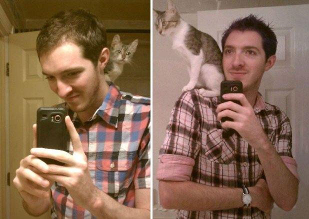 gatos-creciendo-antes-despues-12