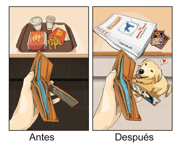 vida-antes-despues-perro-maimai-john-3