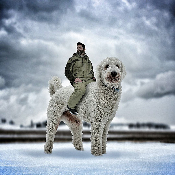 aventuras-juji-perro-gigante-photoshop-christopher-cline-2