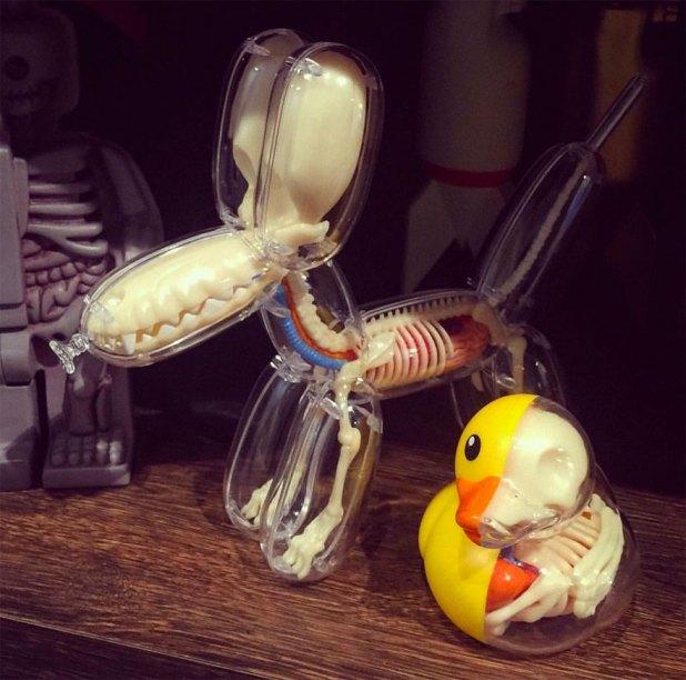 globos-anatomia-animales-jason-freeny-7