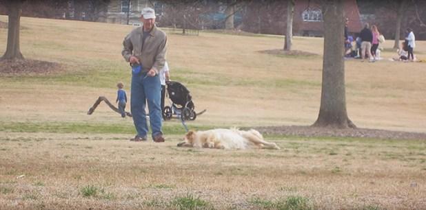 perro-haciendose-muerto-parque-piedmont-atlanta-2