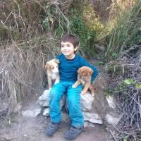 Alicante: Botánico de Sagra
