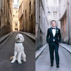 Dog-Wedding-2