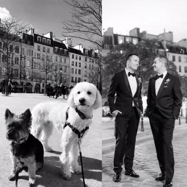 Dog-Wedding-4