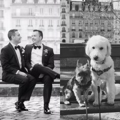 Dog-Wedding-6