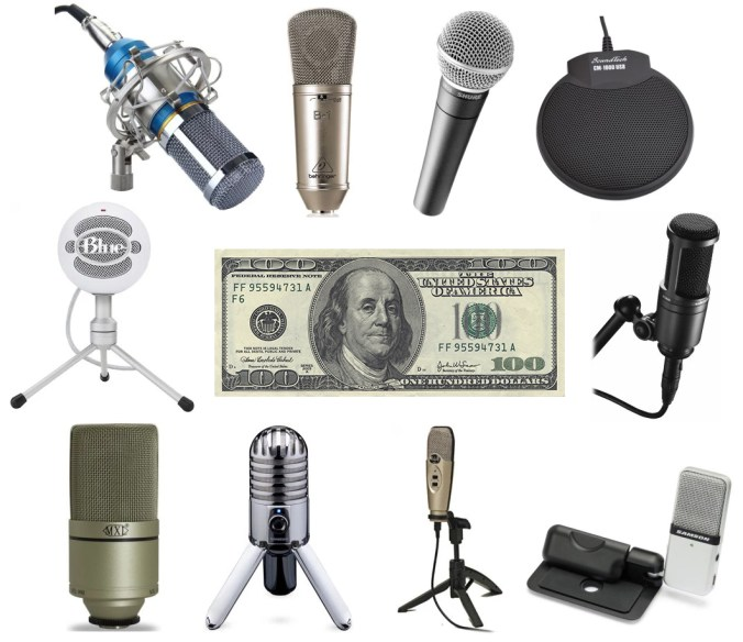 We review the best microphones for a budget under $100 dollars