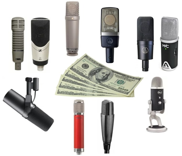 Here's a quick guide and review on the best microphones for under $500 dollar budgets