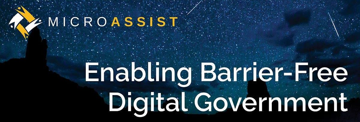 Microassist: Enabling Barrier-Free Digital Government. Text is overlaid on a Department of Land Management photo of a starry sky above Valley of the Gods.