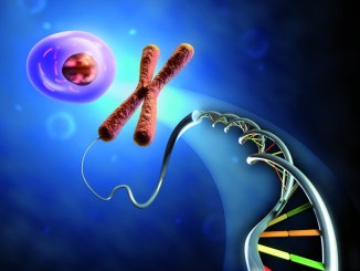 epigenetica microbiologia