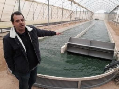 Trattamento aerobico algale-batterico per la depurazione di acque reflue