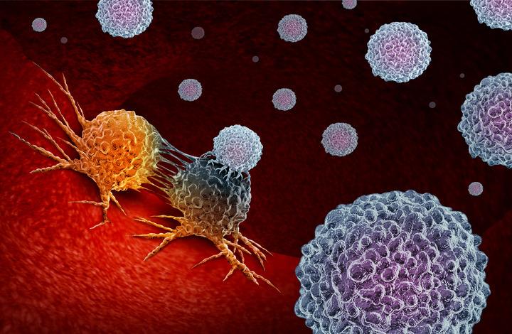 T cells contro il cancro