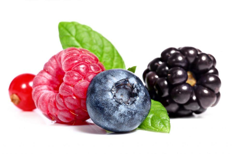 Le antocianine dei frutti proteggono la salute umana ed animale.