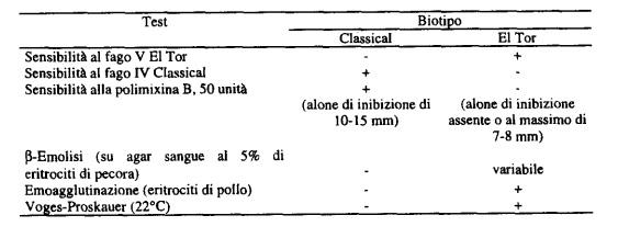 Test da effettuare per la differenziazione del biotipo di V. cholerae