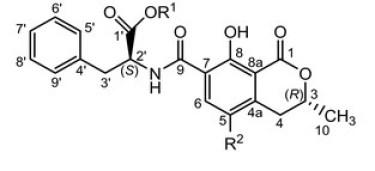 Figura 1: Struttura chimica dell'ocratossina.