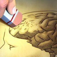 Neuroborreliosi: la malattia di Lyme e i danni al cervello