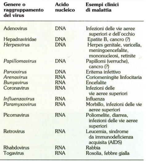 tabella con i virus ad importanza clinica