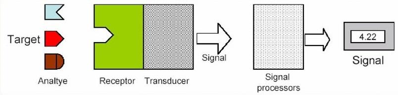 Rappresentazione schematica della struttura generica di un sensore.